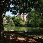 Parque Del Geólogo José Royo Gómez