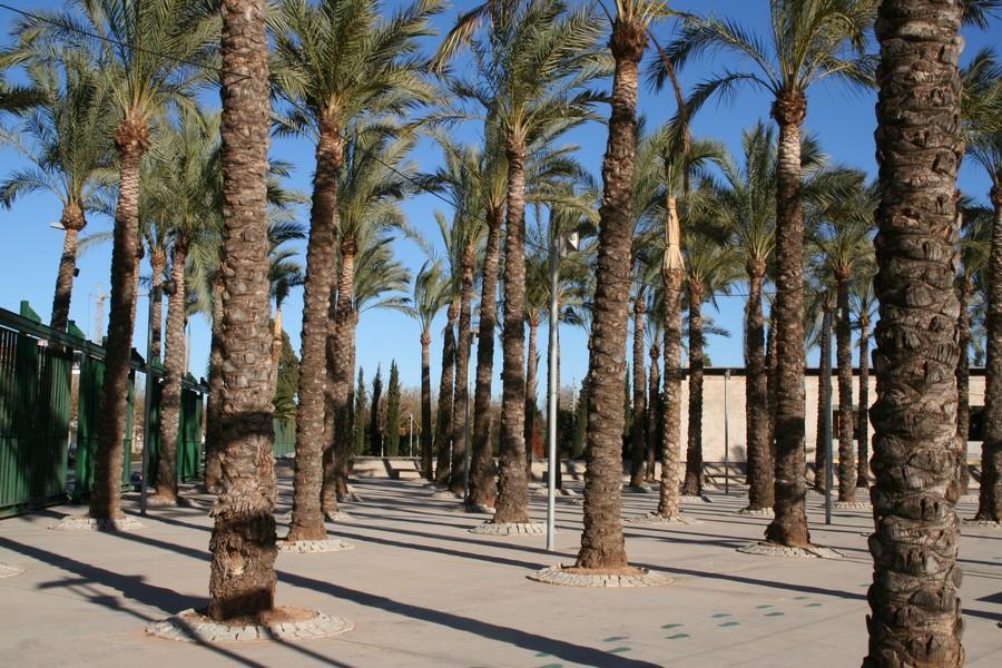 Parque rafalafena castell n turismo for Asociacion pinar jardin