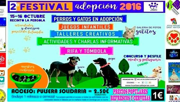 2-festival-adopcion-castellon